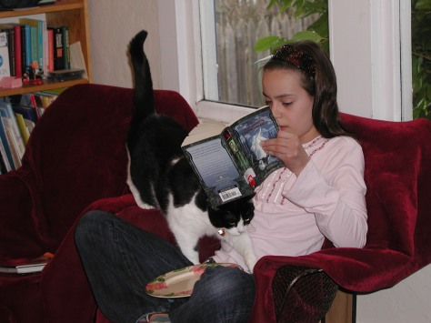 cat climbing into the lap of the reader