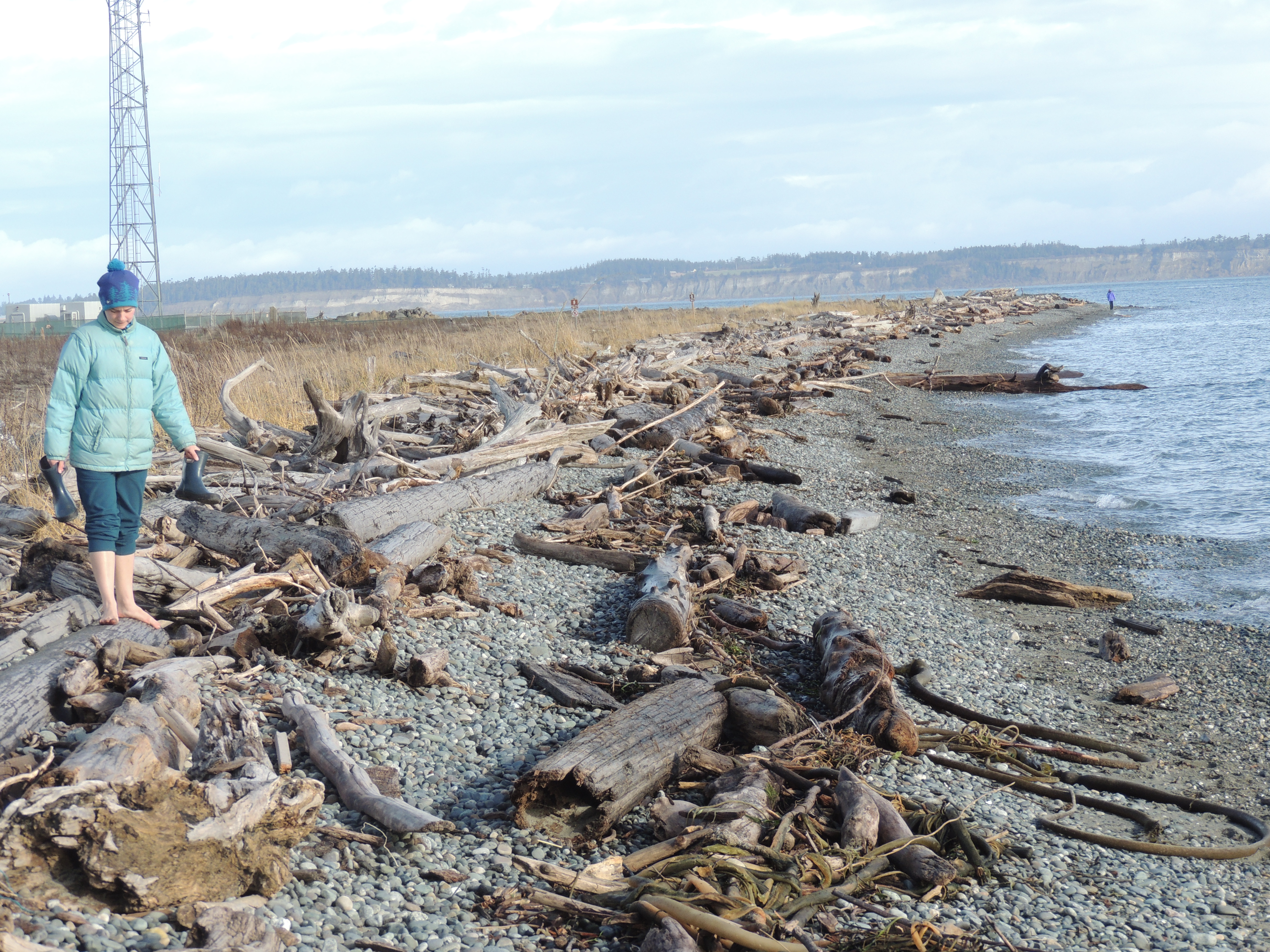 beach with driftwood with barefoot person in down jacket and winter coat, all in shades of blue, gray and turquoise