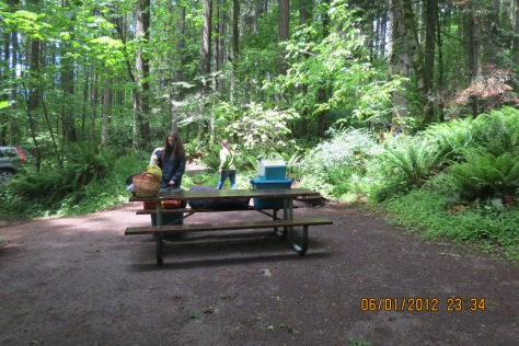 picnic table in the woods with containers to set up camp