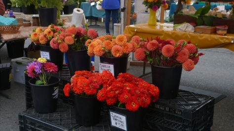 A profusion of orange flowers at the Farmer's Market.