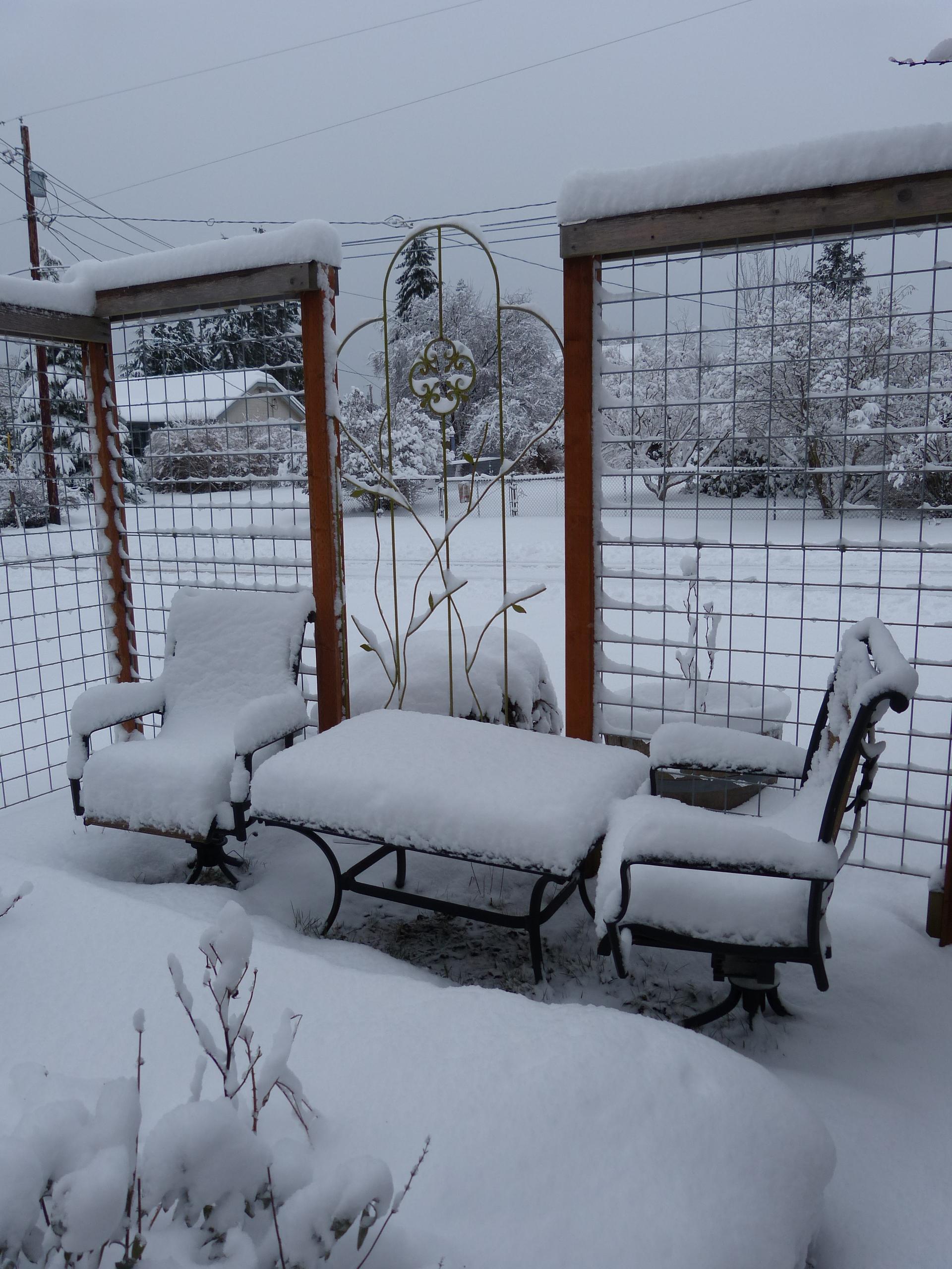 My garden waiting under snow for spring.