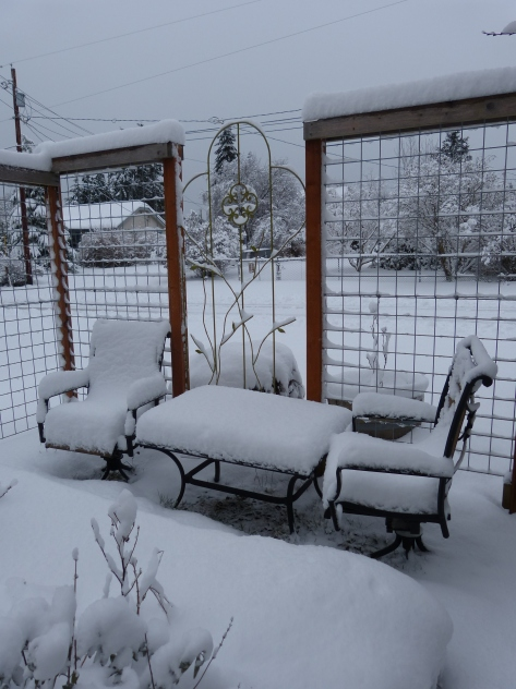 My garden waiting under snow for spring.